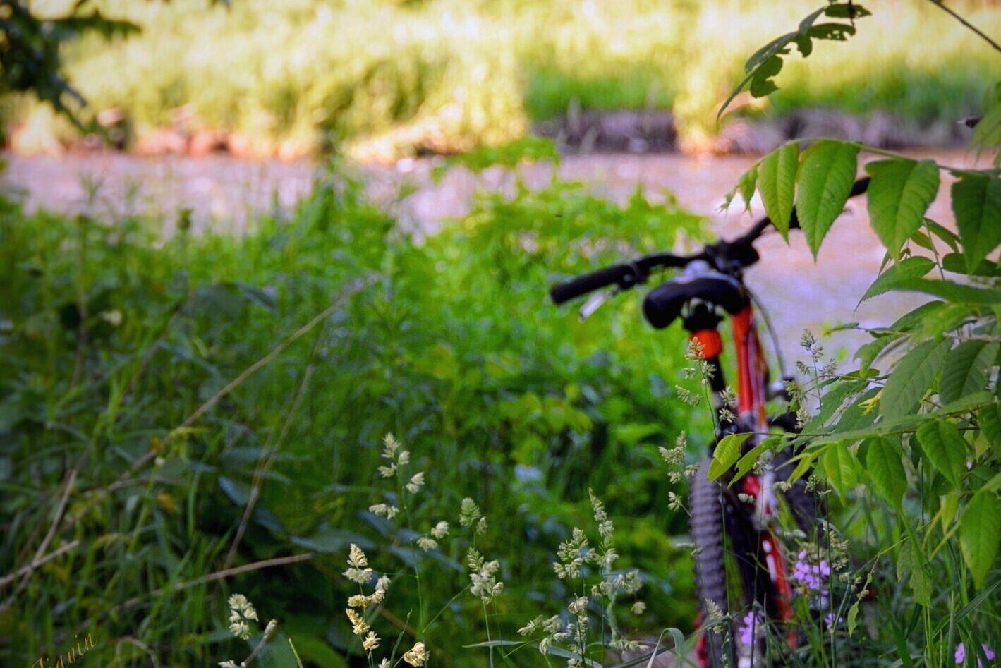Mississauga_Park Trail_bike_CreditRiver